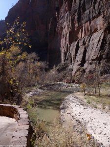 Zion National Park (4)