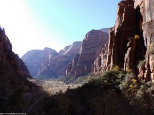 Zion National Park (7)