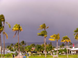 Hawaï, île d'Oahu (3)