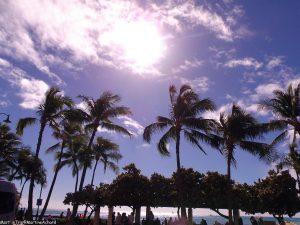 Hawaï, île d'Oahu (5)