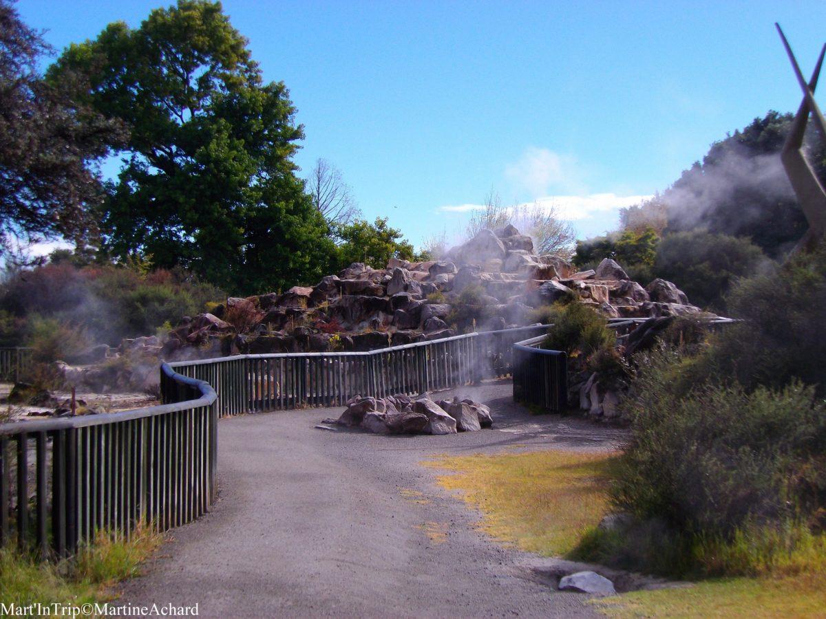 Rotorua Kuau Park