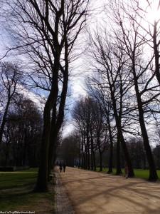 parc du cinquantenaire bruxelles (1)