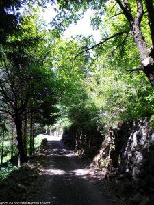 randonnée entre Pont de Chervil et Chalencon (8)
