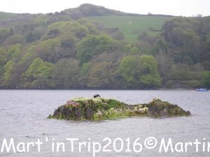 lough ine skibbereen 3