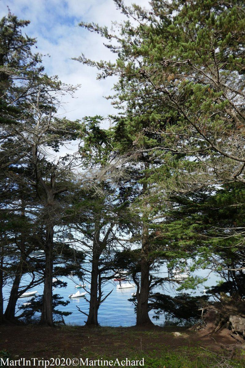 île golfe du morbihan